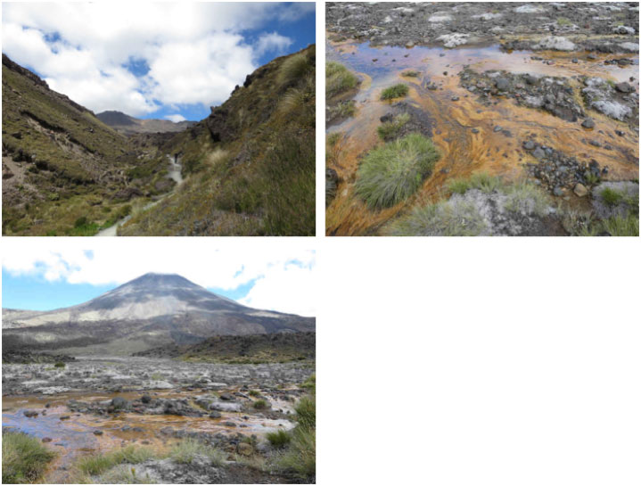 Left to right top: Tongariro trail with tabular lava flows on the left and scoriaceous lava on the right. Colorful filamentous biomass in cold stream flood plane.